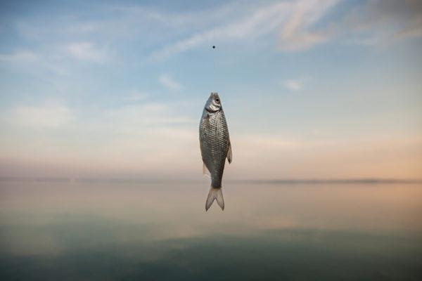 Storytelling documentary photographer European nyár summer dokumentarista történetmesélő gyerek fotózás boncsér orsolya balaton keszeg